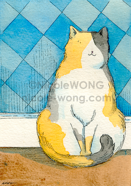 eBay.3.5x5.Calico-Kitty-in-the-blue-room