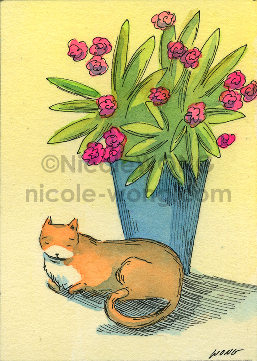 etsy.aceo.Nap-by-the-plant
