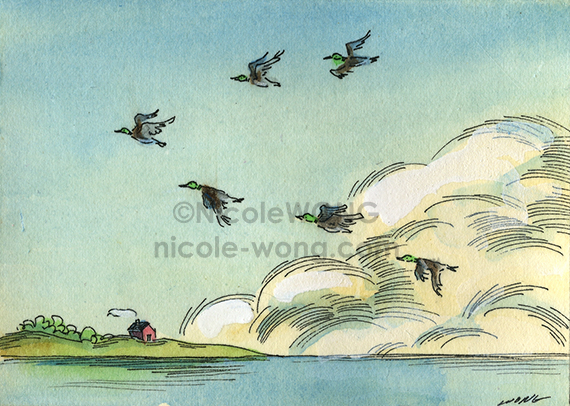 etsy.aceo.Flying-home